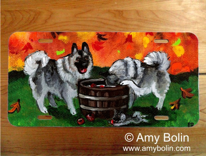 LICENSE PLATE · BOBBING FOR APPLES · NORWEGIAN ELKHOUND · AMY BOLIN