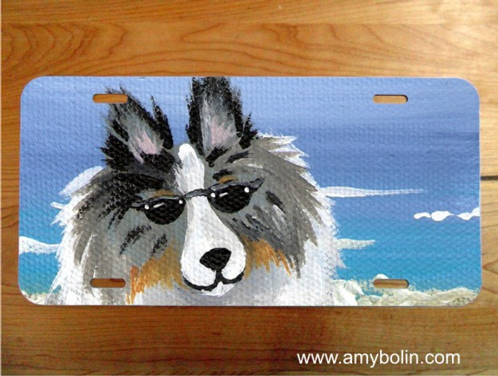 LICENSE PLATE · HELLO HOLLYWOOD · BLUE MERLE SHELTIE · AMY BOLIN