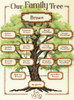 Dimensions - Our Family Family Tree