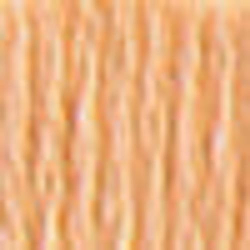 DMC # 3856 Ultra Very Lt Mahogany Floss / Thread