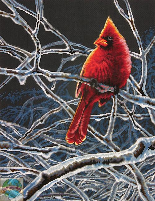 Dimensions - Ice Cardinal