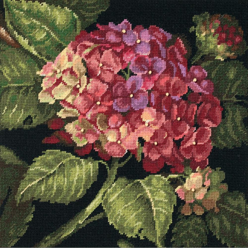 Dimensions -  Hydrangea Bloom