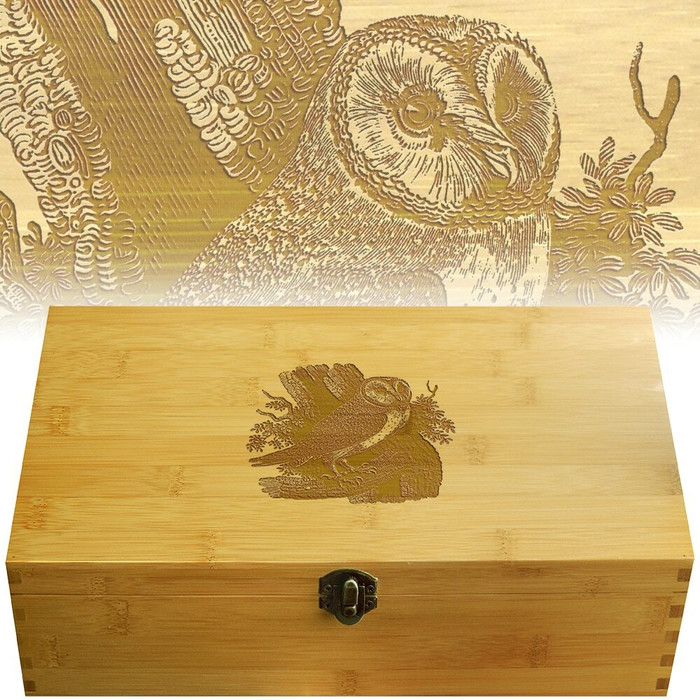 Owl Multikeep Nicknack Box