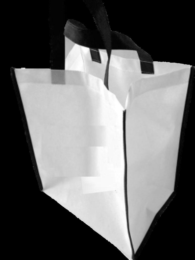 Non Woven Fabtex Shopping Bags