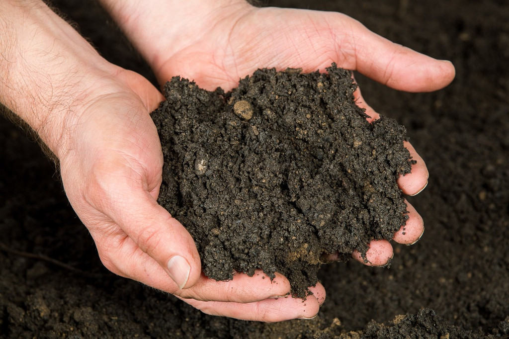 Wonderpost Premium Norfolk Top soil 40L