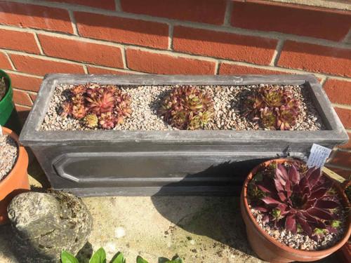 ClayFibre 'Chelsea' Trough Planters