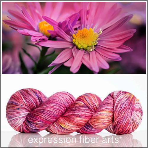 SEPTEMBER ASTER 'PEARLESCENT' WORSTED
