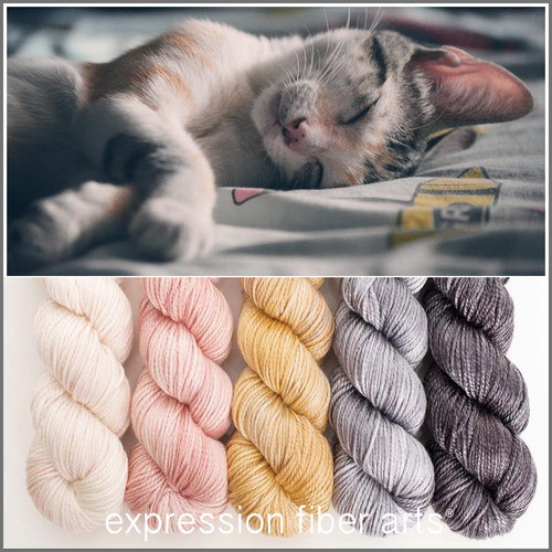 PURRFECT HUES 'LUSTER' WORSTED KIT