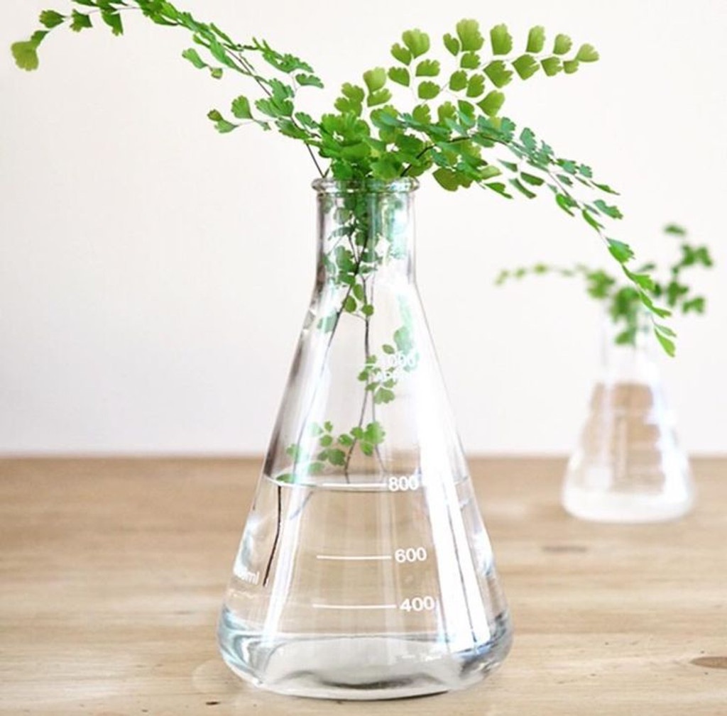 Glass Conical Flask 1000mL