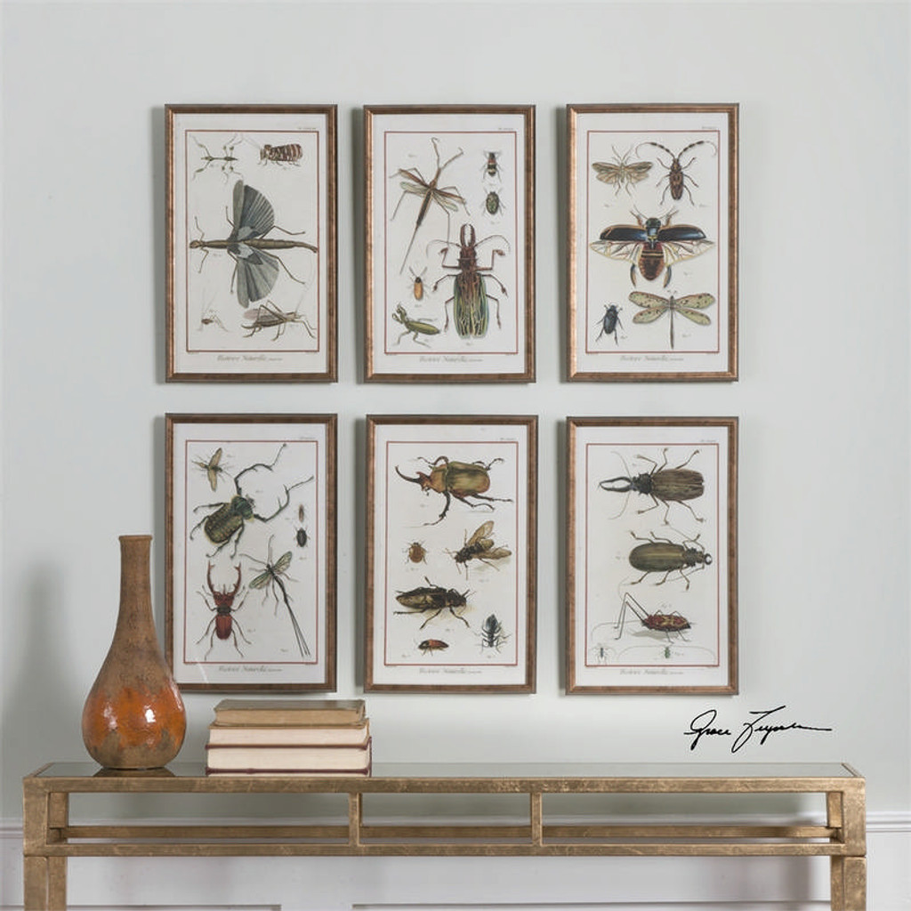 Multi Insects Set of 6 a Prints Framed by Uttermost