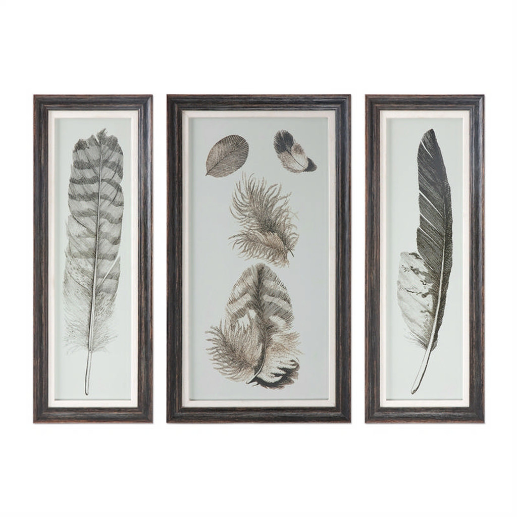 Feather Study Set of 3