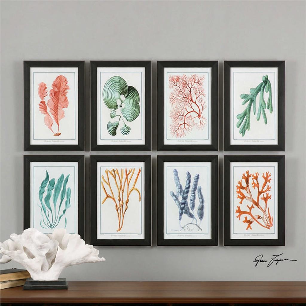 Colorful Algae Set/8 - Framed Artwork a Prints Framed by Uttermost