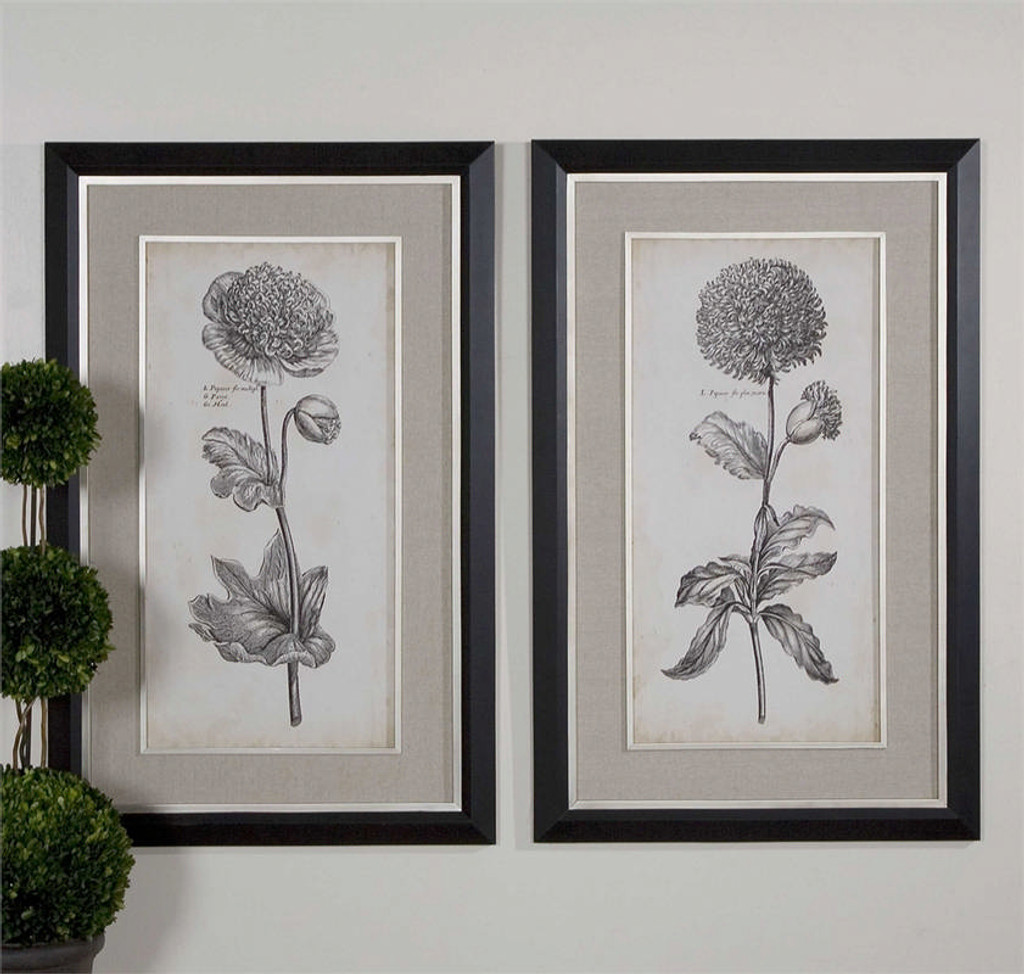 Singular Beauty Set/2 - Framed Artwork a Prints Framed by Uttermost