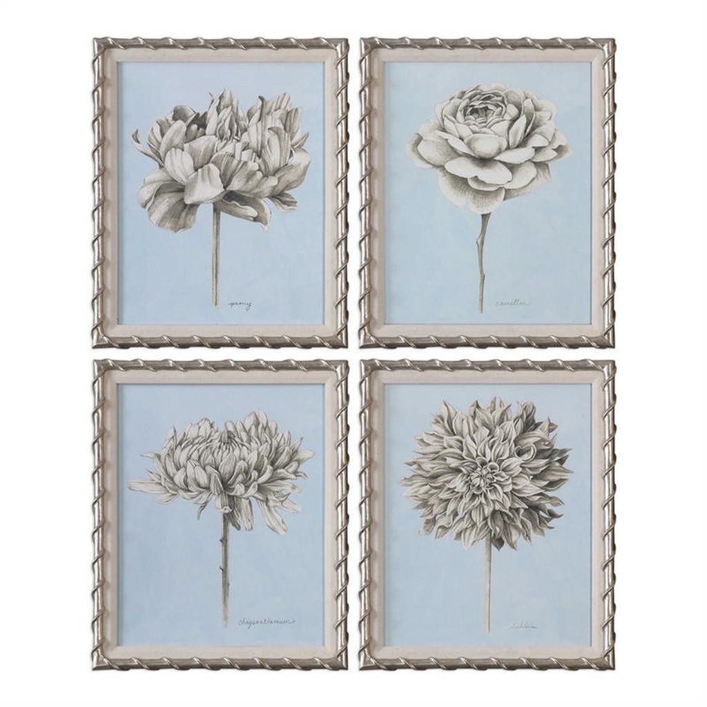Graphite Botanical Study Set/4 - Framed Artwork