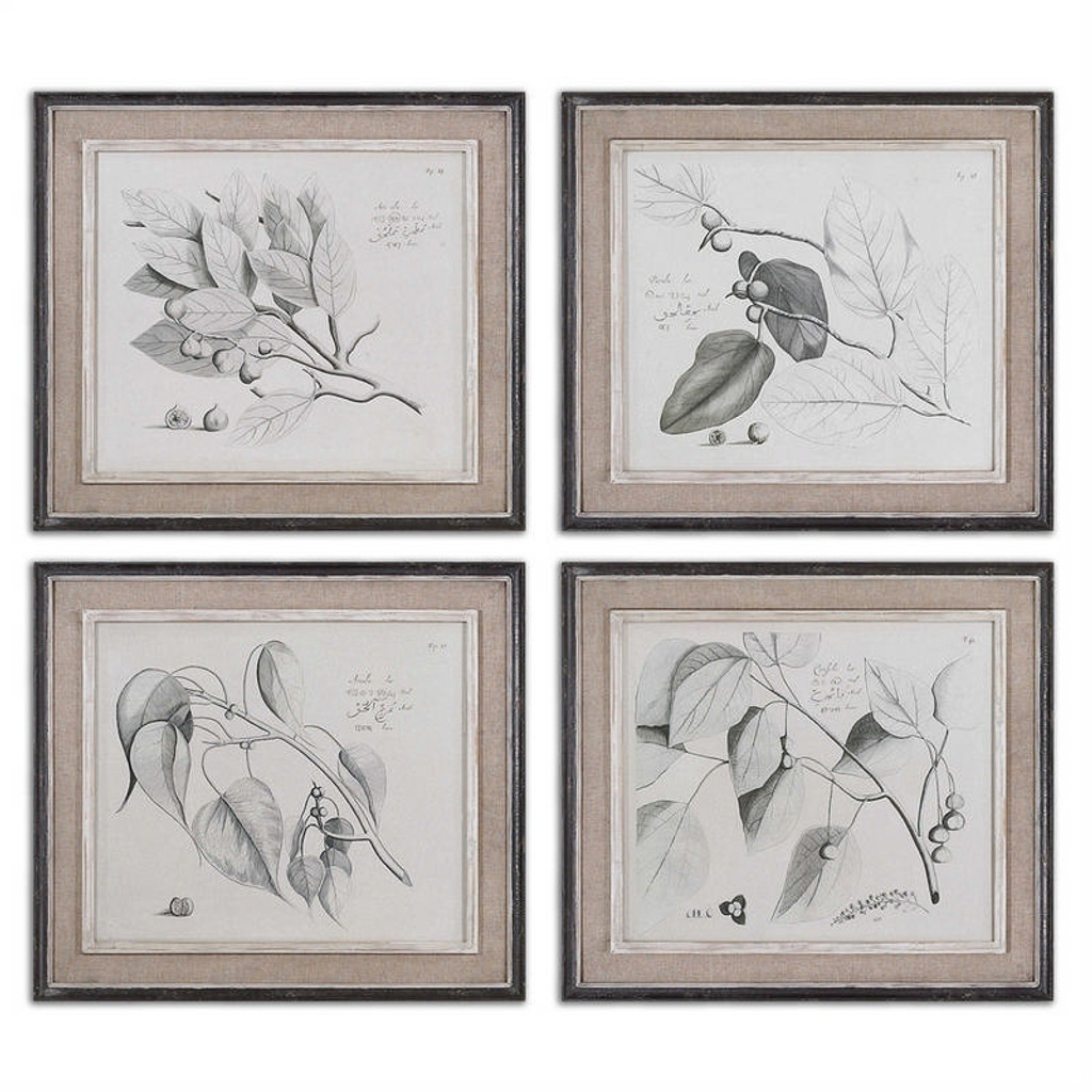 Sepia Leaf Study Set/4 - Oil Reproduction Artwork