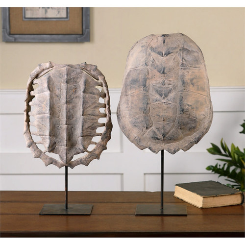Turtle Shells - Set of 2