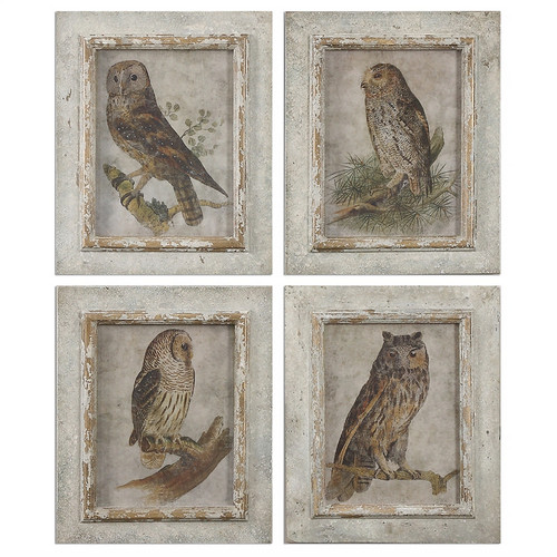 Owls Set of 4