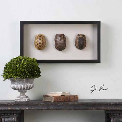 Tortoise Shells Shadow Box Wall Decor a Alternative Wall Decor by Uttermost
