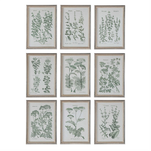 Herb Garden Set/9 - Framed Artwork