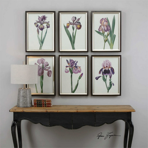 Iris Beauties Set/6 - Framed Artwork a Prints Framed by Uttermost