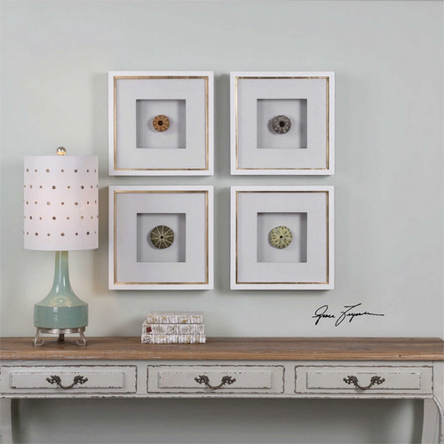 Sea Urchins Set/4 - Framed Artwork a Prints Framed by Uttermost