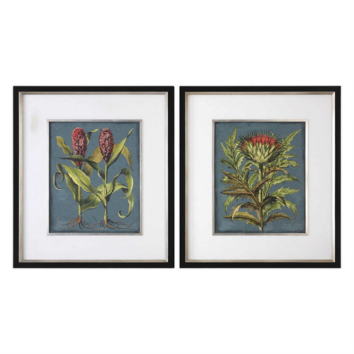 Rhubarb and Artichoke Set/2 - Framed Artwork