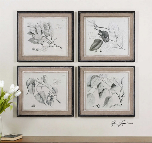 Sepia Leaf Study Set/4 - Oil Reproduction Artwork a Paintings by Uttermost