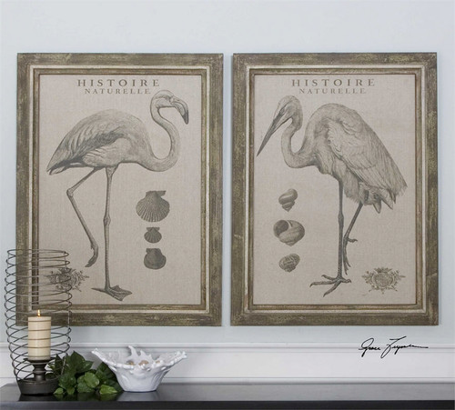 Natural History Set/2 - Framed Artwork a Prints Framed by Uttermost