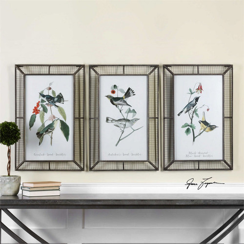 Warblers Set/3 - Framed Artwork a Prints Framed by Uttermost