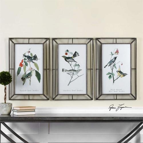 Warblers Set/3 - Framed Artwork a Prints Framed by Uttermost