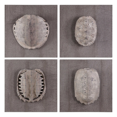 Terrapin Study Set/4 Wall Decor