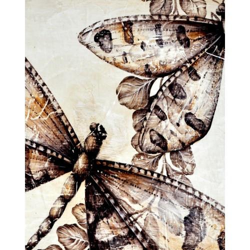 A172 Dragonflies