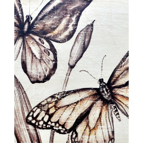 A173 Butterfly