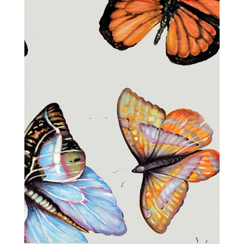 A243 Bugs And Butterflies by Bramble Co