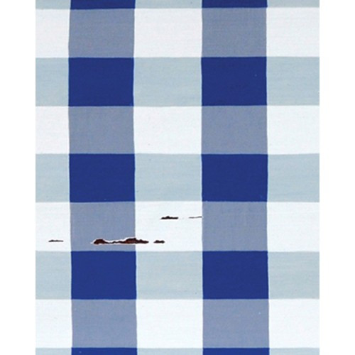 A257 Blue & White Plaid