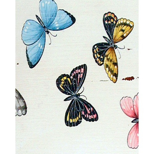 A43 Colorful Butterflies by Bramble Co
