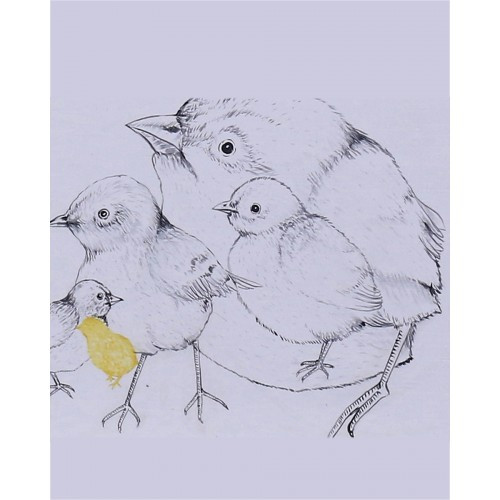 A657 Mama Bird