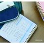 Exam plan - Last 100 days spiral undated planner
