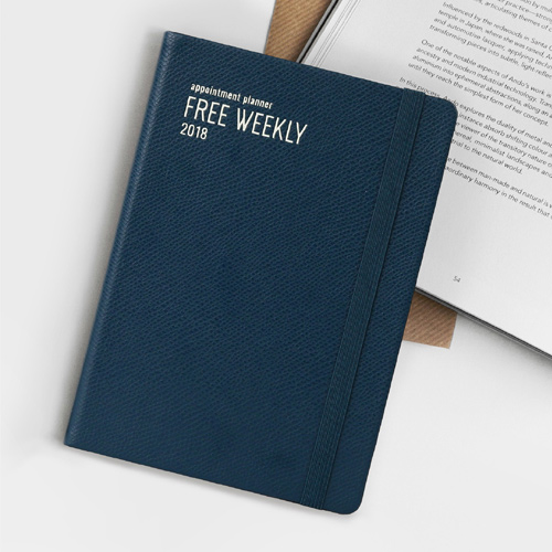 weekly appointment book 2018