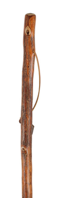 Vine Twisted Walking Stick Image Top
