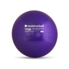 Stability Ball Pro Series 55cm