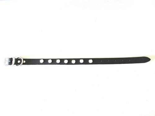 Premium Leather Dog Collar - Medium (18 inches) With Seven 12mm Rivoli Round Rhodium Riveted Empty Settings One Piece