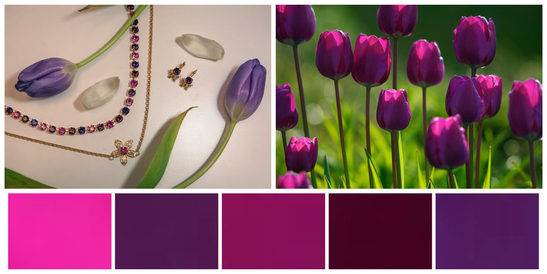 Tulip Pinks and Purples: Inspiration Colors
