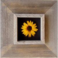 Deep Box Frames