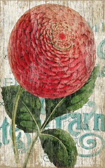 Botanical & Garden Signs