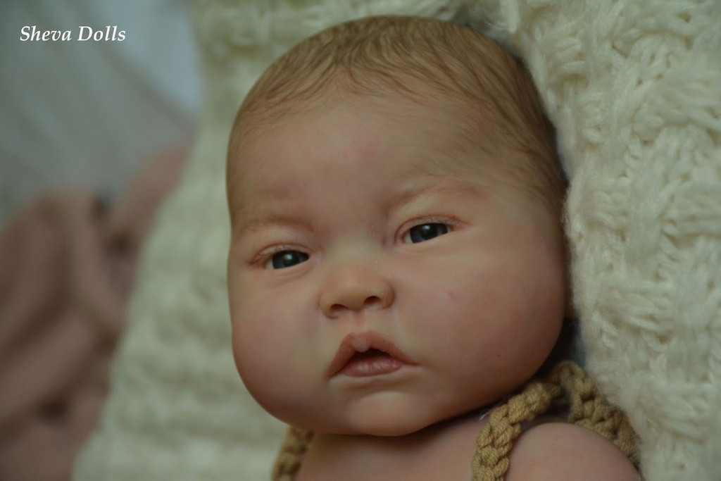 Reine Reborn Vinly Doll Kit by Ping Lau