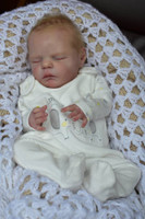 Xander Reborn Doll Kit by Cassie Brace