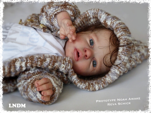 Noah Awake Reborn Vinyl Doll Kit by Reva Schick