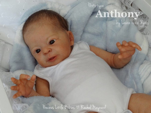 Anthony By Laura Tuzio Ross