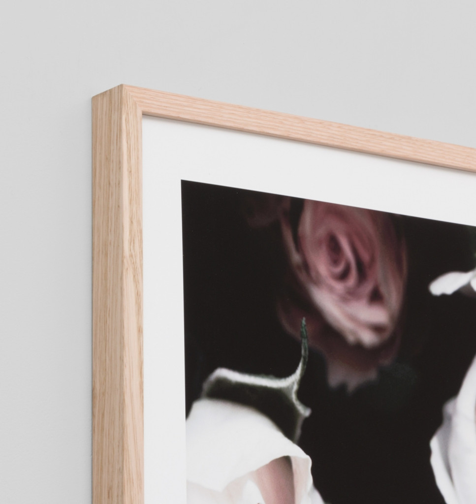 Rose Noir 4  | Detail | Print Decor
